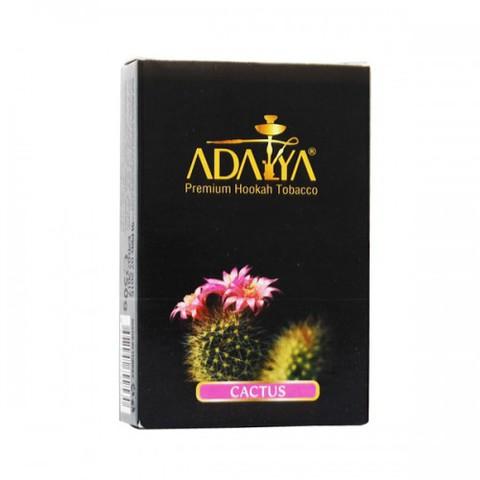 Адалия кактус